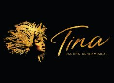 TINA - Das Tina Turner Musical © Stage Entertaiment
